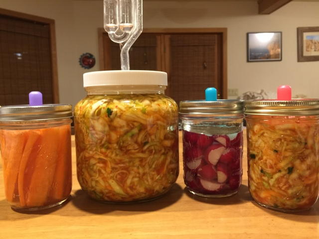 all new ferments