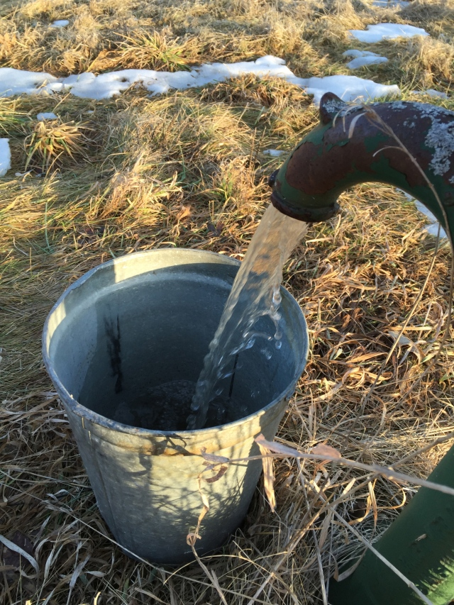 bucket cleaning