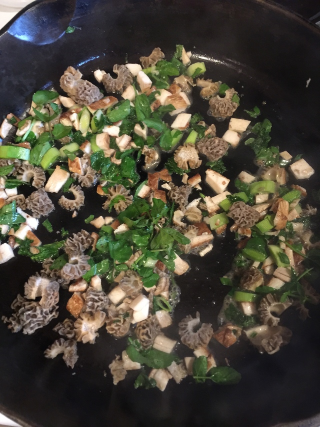 morels, p.b's and watercress