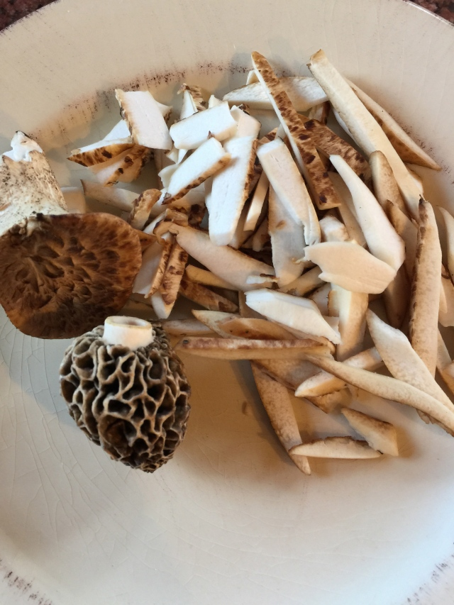 pbs and morels